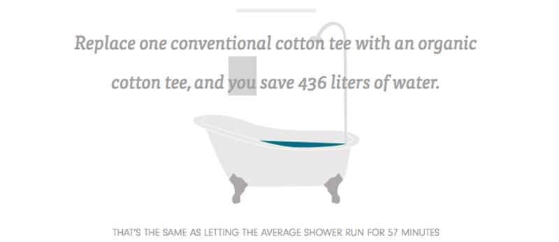 Organic-Cotton---prAna